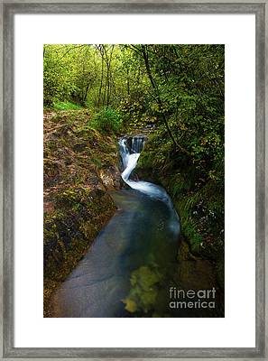 Framed Print featuring the photograph Follow It I by Yuri Santin