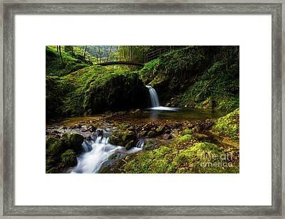 Framed Print featuring the photograph Follow It II by Yuri Santin