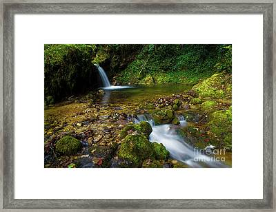 Framed Print featuring the photograph Follow It by Yuri Santin