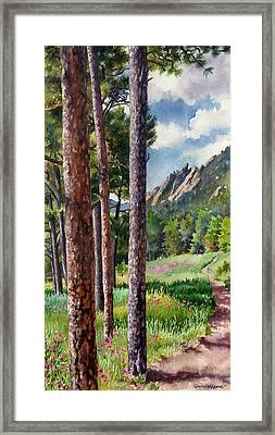 Follow Me Framed Print by Anne Gifford