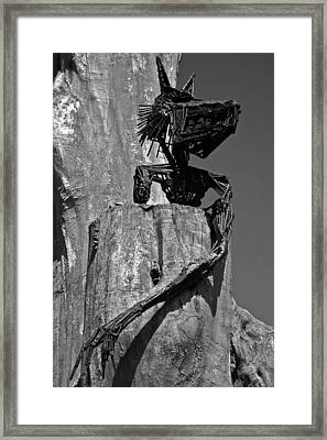 Follow Me ... Framed Print by Juergen Weiss