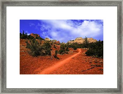 Follow Me Framed Print by Mark Myhaver