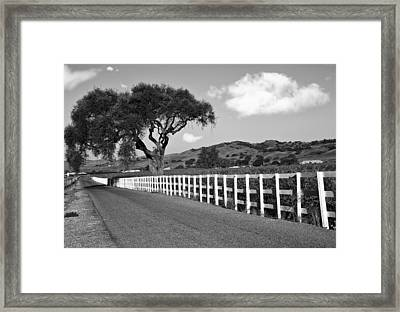 Follow The Fence Framed Print by Patricia Stalter