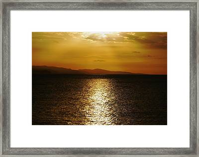 Follow The Gold Framed Print