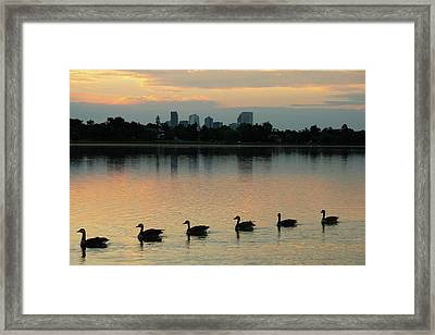 Follow The Leader Framed Print
