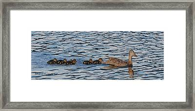 Follow The Leader Framed Print by Sharon Farber