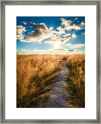 Follow The Light Framed Print by Clay Townsend