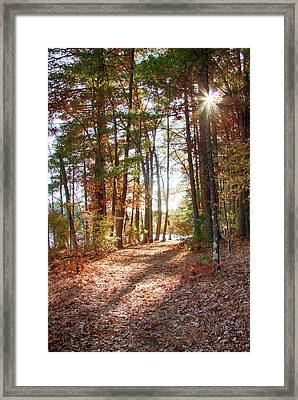Follow The Path Framed Print