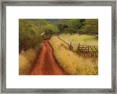 Follow The Red Dirt Road Framed Print