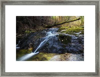 Framed Print featuring the photograph Follow The Stream by Yuri Santin
