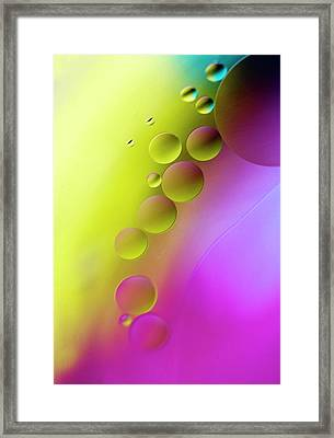 Following Framed Print by Rebecca Cozart