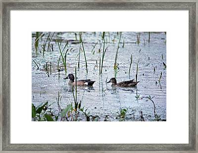 Following The Path Framed Print by Teresa Blanton