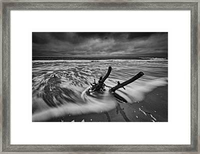 Folly Beach Boneyard Framed Print by Rick Berk
