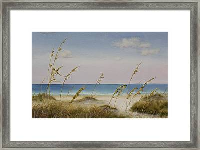 Folly Beach Framed Print by Cindy Davis