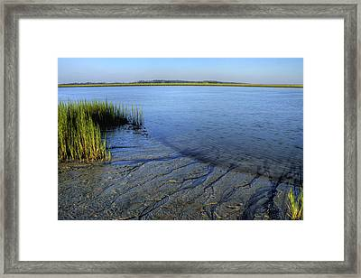 Folly Beach Marsh  Framed Print by Dustin K Ryan