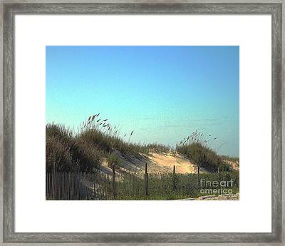 Folly Beach Sc Dunes Framed Print