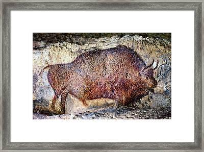 Font De Gaume Bison Framed Print