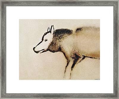 Font De Gaume Wolf Framed Print