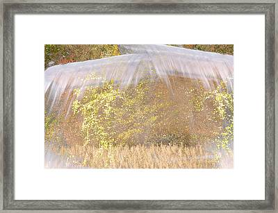 Fontaine Aux Fleurs Framed Print by Mary Mansey