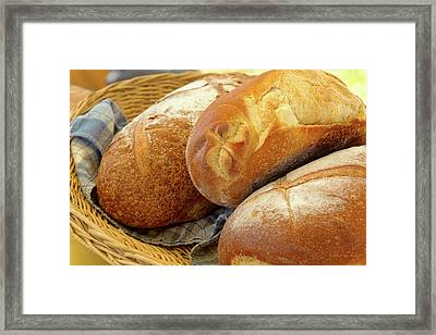 Framed Print featuring the photograph Food - Bread - Just Loafing Around by Mike Savad