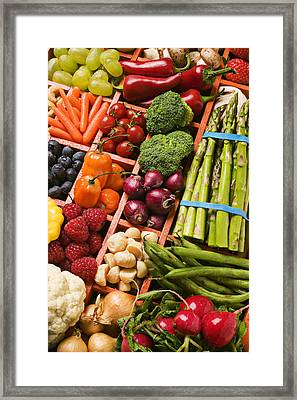 Food Compartments  Framed Print