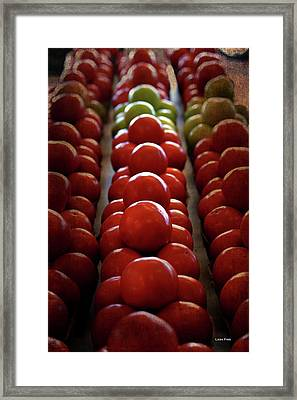 Food Tomatoes Marching Maters Framed Print