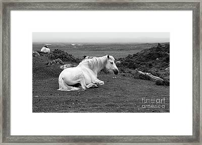Fooggy Day Roundstone Framed Print
