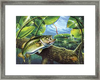 Fooled Again Bass II Framed Print