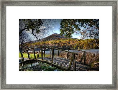 Foot Bridge Framed Print