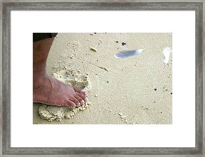 Foot  On  Beach -  Image  2 -  Cropped  Version Framed Print