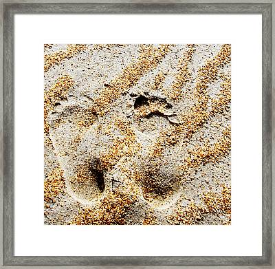 Foot Prints  -  Part 2 Of 3 Framed Print by Sean Davey