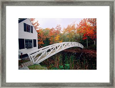 Footbridge And Foliage Framed Print by George Oze