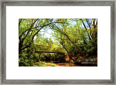 Framed Print featuring the photograph Footbridge At Bisset Park - Radford Virginia by Kerri Farley