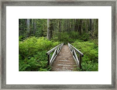 Footbridge Framed Print by Eric Foltz