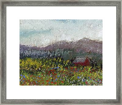 Foothills Meadow Framed Print by David Patterson