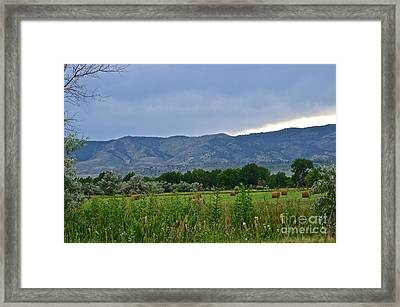 Foothills Of Fort Collins Framed Print