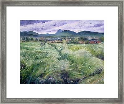 Foothills Of Tangkuban Perahu Jawa Barat Java Indonesia 2008 Framed Print by Enver Larney