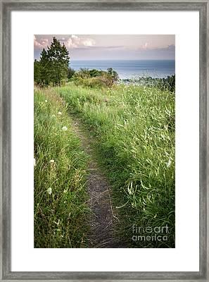 Footpath Along Cliffs Framed Print by Elena Elisseeva