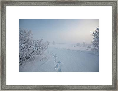 Footprint In Snow Framed Print by Elin Enger