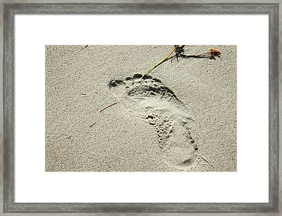 Footprint In The Sand  - South Beach Miami Framed Print