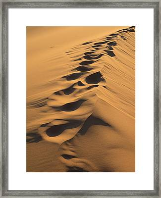 Footprints Along Top Of Sand Dune, Erg Framed Print by Panoramic Images