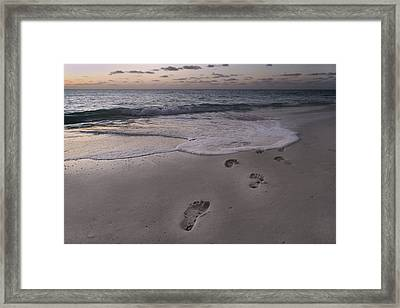 Footprints In The Sand Framed Print by Betsy Knapp