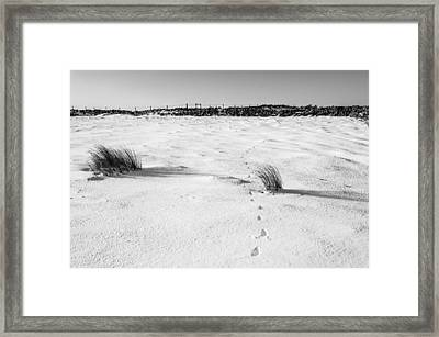 Footprints In The Snow I Framed Print