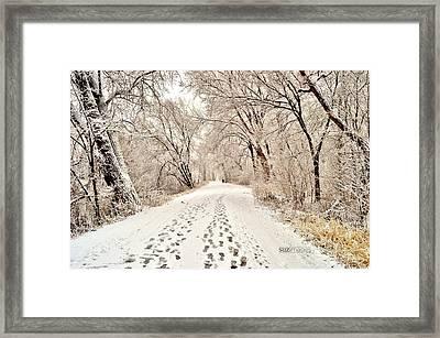 Footprints  Framed Print