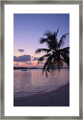 Footsteps Framed Print