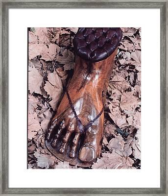Footstool Framed Print by Lionel Larkin