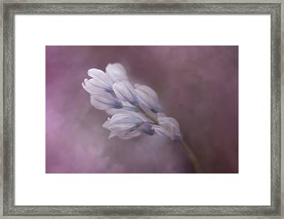 For A Moment Framed Print