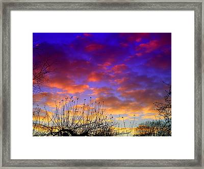For Sharon Framed Print by Michael Canning