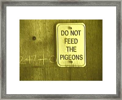 For The Birds Framed Print