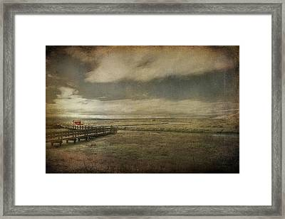 For The Lonely Souls Framed Print by Laurie Search